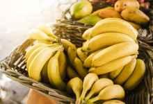 Photo of Ile kilokalorii ma banan? Czy warto włączyć go do diety redukcyjnej?